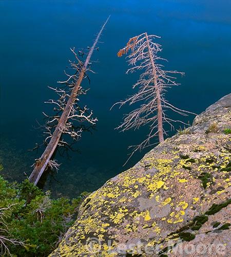 LMP-8806-gourd-lake-indian-peak-wilderness-co