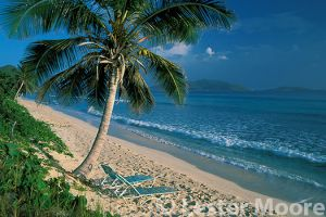 LMP-4467-long-bay-beach-british-virgin-islands-bvi.jpg