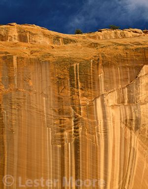 LMP-5569-grand-staircase-escalente-national-monument-ut.jpg