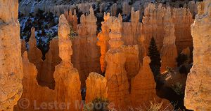 LMP-5584-bryce-canyon-national-park-utah.jpg