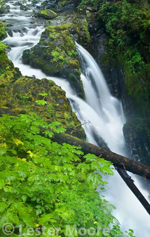d02093-sol-duc-falls-olympic-national-park-washington.jpg