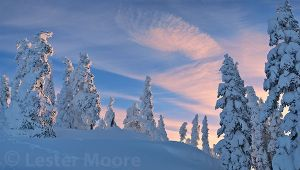 d02132-hurricane-ridge-winter-sunrise.jpg
